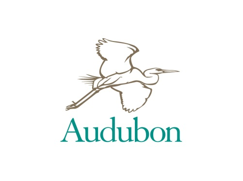 audubon_logo-for-web